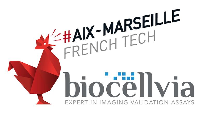 French Tech : Quels avantages pour une startup d'intégrer cet écosystème ?