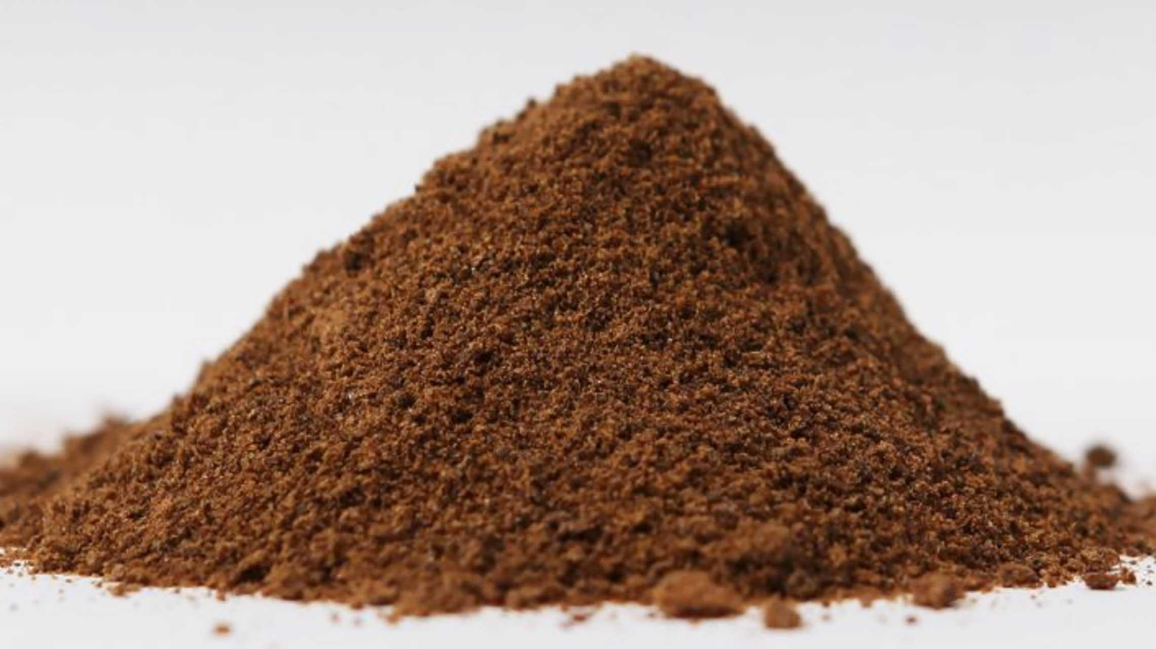 La farine d'insectes : bientôt une denrée alimentaire pour les animaux ?