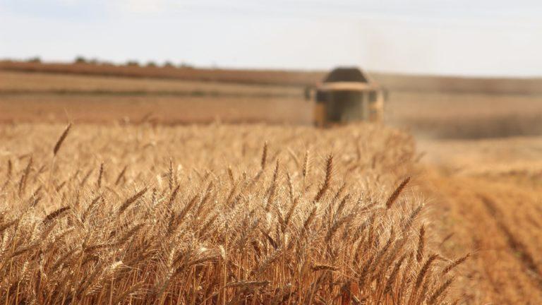 Défis et enjeux majeurs de l'agriculture de demain